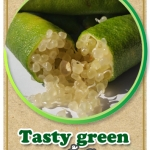 ต้นมะนาวคาเวียร์เสียบยอดสายพันธุ์ Tasty Green Size L
