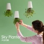 กระถางต้นไม้คว่ำหัวลอยฟ้า Sky Planter