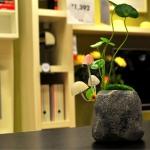โคมไฟ Avatar Mushroom Lamp Rock < พร้อมส่ง >