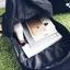 กระเป๋าเป้ แมวเหมียว thumbnail 6