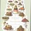 ตำนานอาหารโลก (What Caesar Did for My Salad: The Secret Meanings of our Favourite Dishes) thumbnail 1