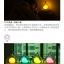 โคมไฟนกในโหลแก้ว ระบบสัมผัส Birdcage LED Lamp thumbnail 17
