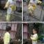 ชุดนอนเด็กเล็ก แขนยาว+ขายาว ลายการ์ตูนเป็ดสีเหลือง สำหรับเด็ก 1-3 ปี thumbnail 3