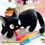 กระเป๋าใส่ดินสอแมวจีจี๊ Gigi thumbnail 1
