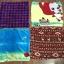 ผ้าห่มขนนุ่ม L(คละลาย) thumbnail 1