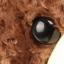 ตุ๊กตาหมีตัวใหญ่ ใส่เสื้อกันหนาว thumbnail 7