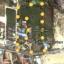 ที่ดินเปล่า 10 ไร่ 3 งาน 27 ตรว. ถนนคลองเทียน ชะอำ เพชรบุรี thumbnail 6