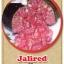 ต้นมะนาวคาเวียร์เสียบยอดสายพันธุ์ Jali Red Size M thumbnail 1