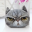 หมอนซุกมือลายหน้าแมว 3D thumbnail 2