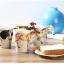 แก้วน้ำ 3D รูปสัตว์ Wild Animal Mugs < พร้อมส่ง > thumbnail 14