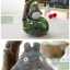 กล่องดนตรี Totoro thumbnail 3