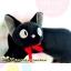 กระเป๋าใส่ดินสอแมวจีจี๊ Gigi thumbnail 3
