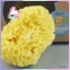 ฟองน้ำธรรมชาติ Honeycomb PUREEN thumbnail 4
