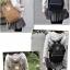 กระเป๋า Anello Nylon Mini Square สี Khakhi ราคา 1,390 บาท Free Ems thumbnail 11