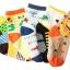 ถุงเท้าเด็กเล็ก ชาย 1-3 ปี มีกันลื่น พิมพ์ลายการ์ตูน แฟชั่นญี่ปุ่น thumbnail 2