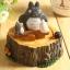 กล่องดนตรี Totoro thumbnail 6