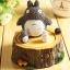 กล่องดนตรี Totoro thumbnail 7