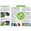 Mega We Care Hi Green ชาเขียวสกัด 375มก.30เม็ด (ซื้อ4กล่องฟรี1กล่อง) thumbnail 3