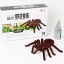 Spider แมงมุมบังคับ < พร้อมส่ง > thumbnail 2