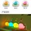 โคมไฟนกในโหลแก้ว ระบบสัมผัส Birdcage LED Lamp thumbnail 7