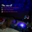โคมไฟเต่าทะเล thumbnail 2