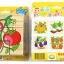 ของเล่นไม้ จิ๊กซอว์บล็อกไม้ 3 มิติ ของเล่นไม้เสริมพัฒนาการเด็ก thumbnail 11