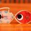 ของเล่นไม้ ชุดตกปลาแม่เหล็ก Magnetic Fishing Box Set thumbnail 14