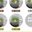 แก้วเซรามิคสัตว์น้อย <พร้อมส่ง> thumbnail 7