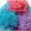SW001••ชุดว่ายน้ำ••ดอกไม้แสนสวย thumbnail 10