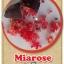 ต้นมะนาวคาเวียร์เสียบยอดสายพันธุ์ Mia Rose Size M thumbnail 1