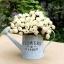 ถัง กระถางต้นไม้สังกะสีมีหูหิ้วเชือกปอ ลาย Flower & Garden thumbnail 6