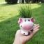กระถางเซรามิคปลูกต้นไม้ รูปวัวน่ารัก (ยกคู่) thumbnail 4