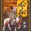 ตั้งฮั่น พงศาวดารจีน (ปกแข็ง) [mr05] thumbnail 1