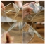 แก้วกล่องนม < พร้อมส่ง > thumbnail 4