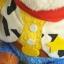 ตุ๊กตา Toy Story ขนเปียก thumbnail 9