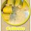 ต้นมะนาวคาเวียร์เสียบยอดสายพันธุ์ Colette Size M thumbnail 1