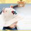 HT483••หมวกเด็ก•• / หมวกปีกกว้าง-DH (สีเบจ) thumbnail 3