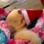 SugarGang ชุดซานต้า+หมวก ไซส์ M (เด็กโตปกติ-ท้วม) thumbnail 4