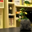 โคมไฟ Avatar Mushroom Lamp Rock!! thumbnail 1