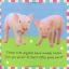 หนังสือผ้า Baby Bunny จาก Priddy Books thumbnail 5
