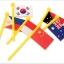 ของเล่นจับคู่ แผนที่โลก+ธงประจำชาติ ขนาด 47*29*0.8 cm thumbnail 5
