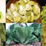 """มัสตาร์ด กรีน""""ไก๋ฉ่าย"""" (Mustard green """"Gai chai"""") / 100 เมล็ด"""