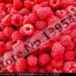 ราสเบอรี่ แดง Red Raspberry / 20 เมล็ด