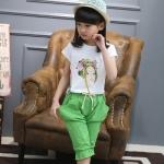 TN540 -เสื้อ+กางเกง 6 ชุด/แพค ไซส์ 100-150
