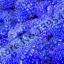 ราสเบอรรี่ สีฟ้า Blue Raspberry / 20 เมล็ด thumbnail 2