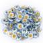 ดอก Chrysanthemum / 30 เมล็ด thumbnail 1