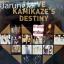 CD+DVD rs Kamikaze : I Love Kamikaze's Destiny thumbnail 1