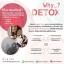 Synovy Detox Fiber ซินโนวี่ดีท็อกซ์ (ไฟเบอร์) 1 กล่อง thumbnail 17
