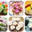 ดอก Lithops Seeds Living Stones Succulent Cactus Mix(คละสี) / 20 เมล็ด thumbnail 1