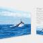 Xiaomi Yi 4K Action Camera เวอร์ชั่น US (ประกันศูนย์ไทย 1 ปี) thumbnail 6